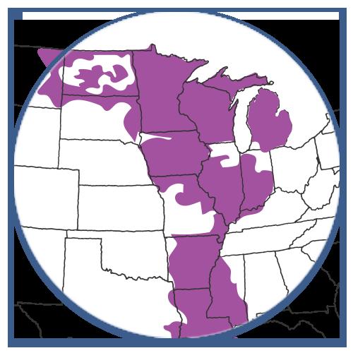 MISO Region